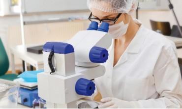 Світлова і люмінесцентна мікроскопія