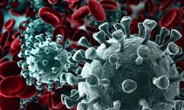Імуноглобуліни до коронавірусу (IgG, IgM, IgA )